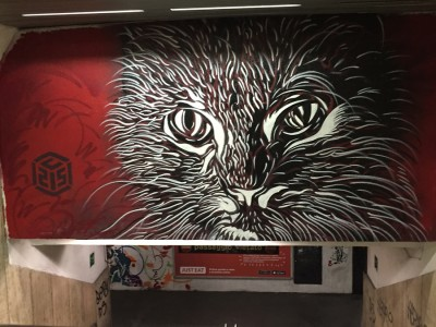 Rome - by C215  (2015)