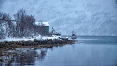 Norvège (E.R)