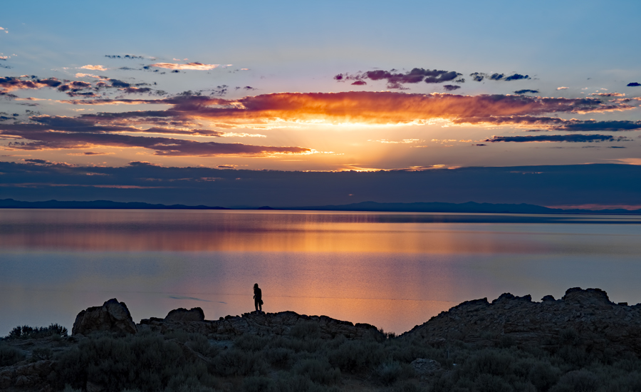 Salt lake city : Antelope Island State Park